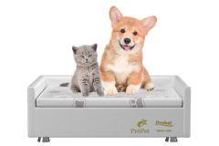 Conjunto Box Probel Pró Pet p/ Cães e Gatos - Colchão Probel