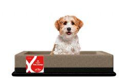 Colchão Box Pelmex Pet Foam p/ Cães e Gatos - Colchão Pelmex